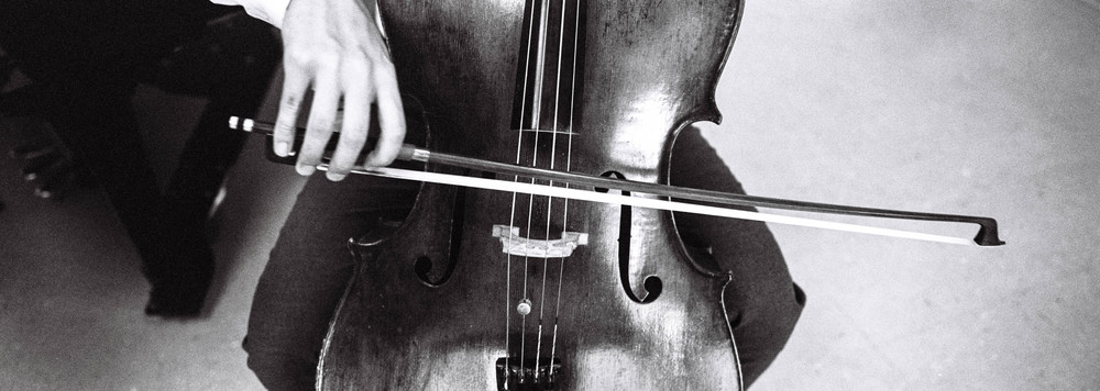 With a panoramic view, I can zone in on horizontal details. Here I was able to fit the entire cello bow into the frame, while the cellist was playing.