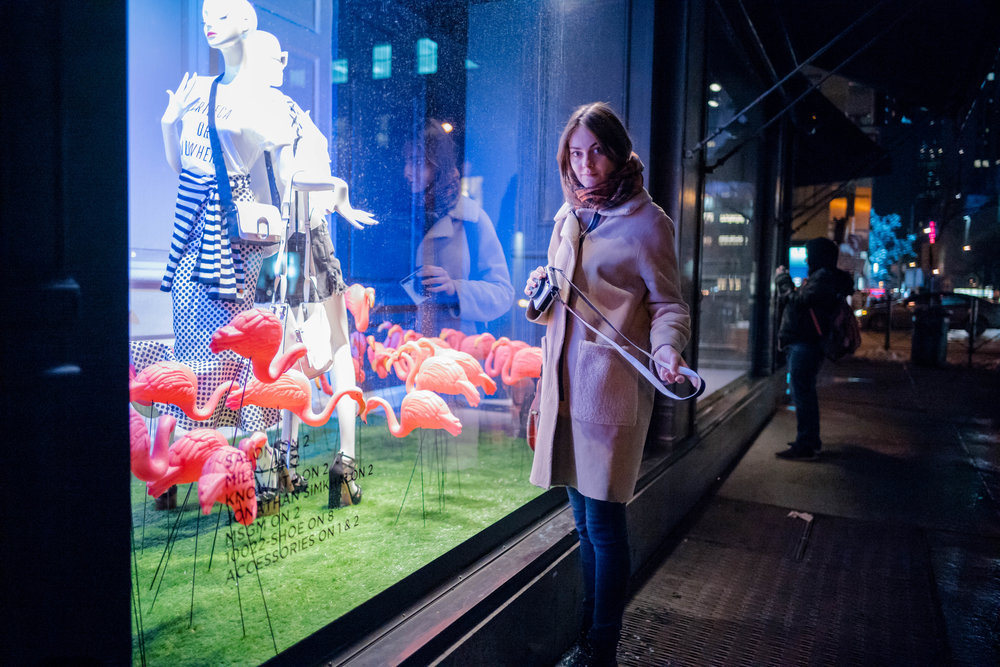 Looking at some plastic flamingos inside a Saks Fifth Avenue store window display.