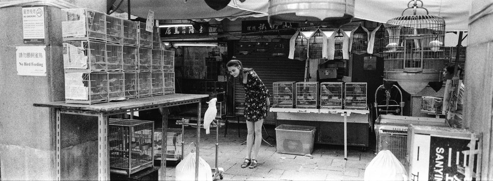 At the bird market in Kowloon - Ilford Delta 3200