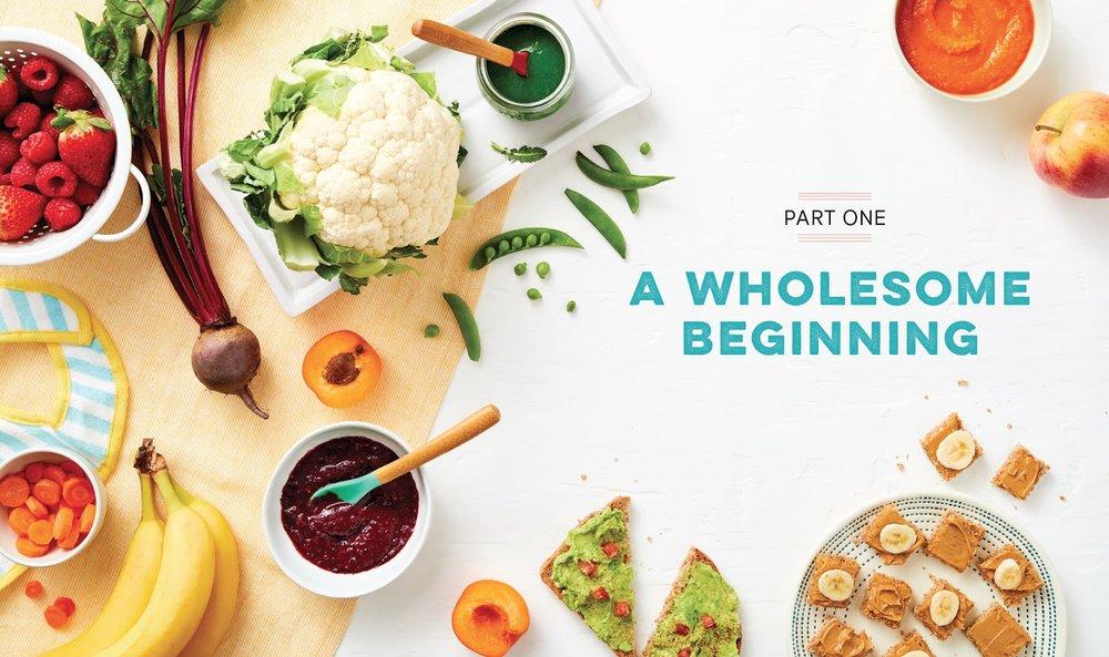 Baby-Cookbook WholesomeBeginning.jpg
