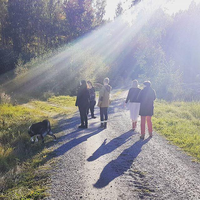 Tiimipäivän kävelykokous syysauringossa. Kehittämistoiminnan jakamista, hankekäsikirjaa ja ratkaisupajoja ideoitu. Oli tilaa ajatuksille peltomaisemissa ja metsissä. 🍁🍂🌲