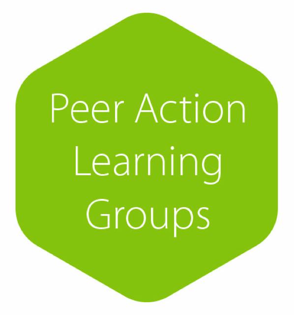 Peer AL Groups