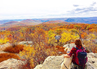 Fall Foliage 2015 at the firetower on Mount Beacon.