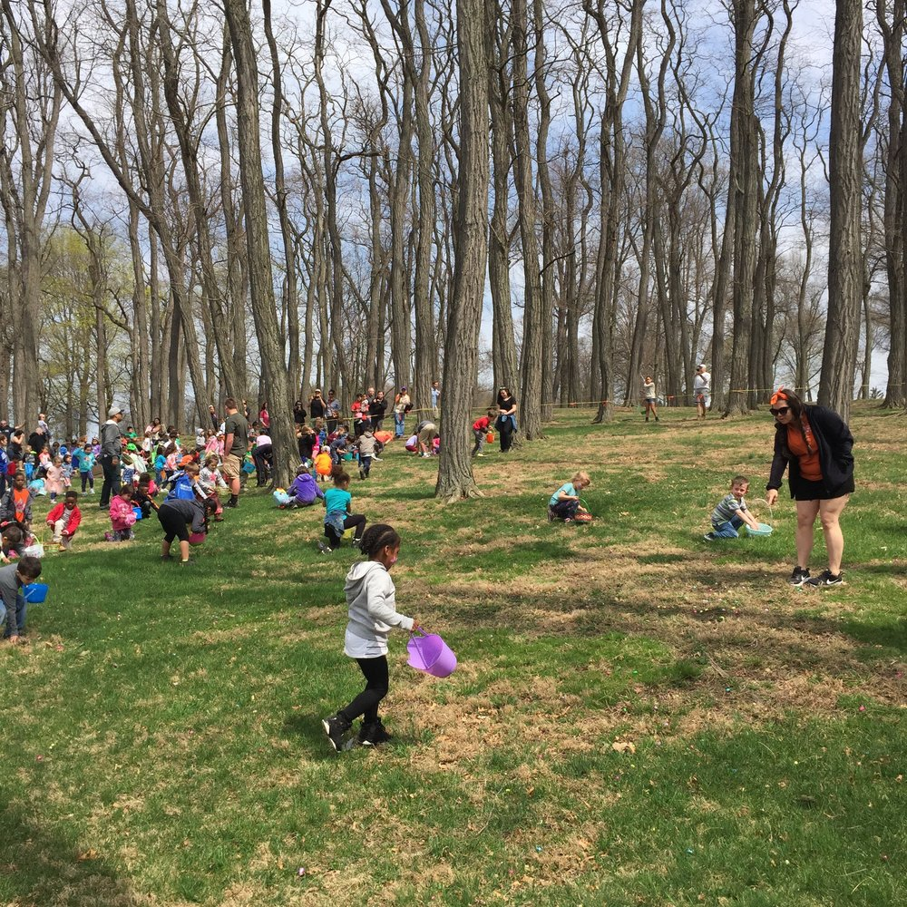 Kids searching for candy in the locust forest of Memorial park's Hill during the 2017 Easter Egg Hunt. Photo Credit: Katie Hellmuth Martin