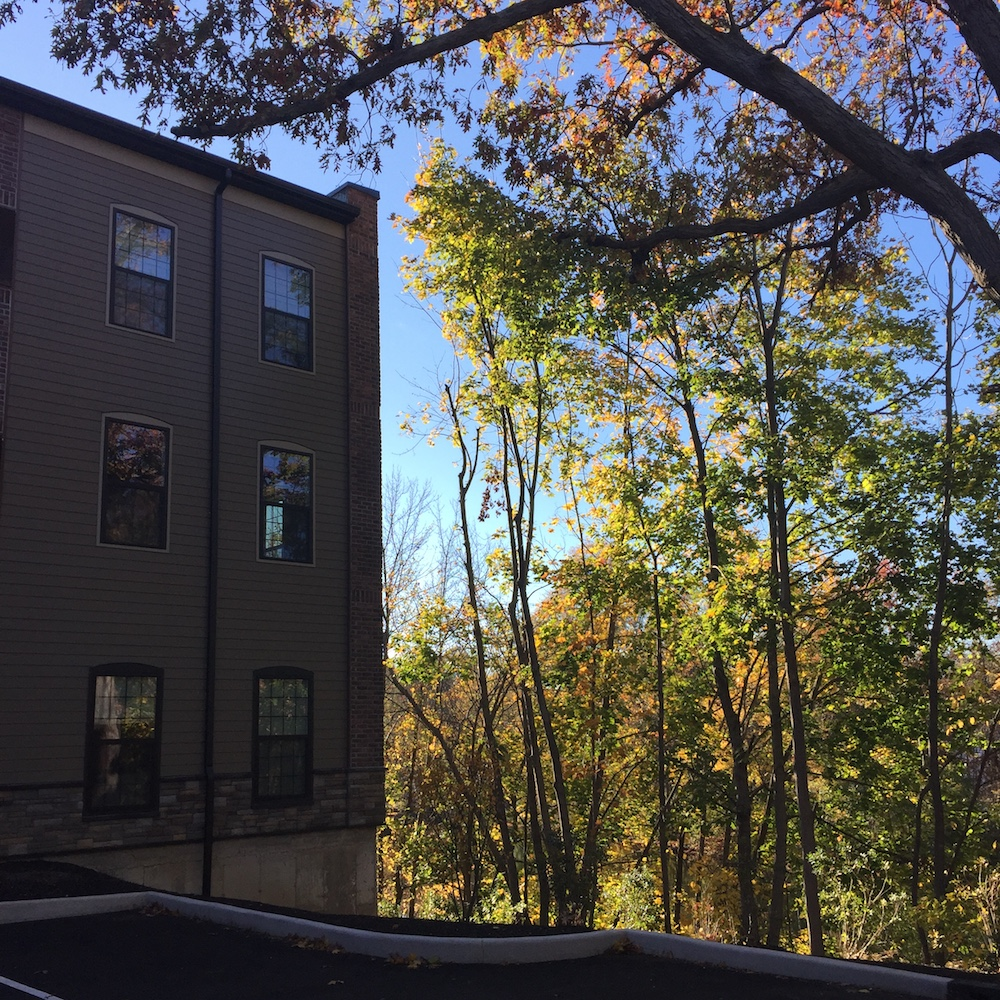 lofts at Beacon falls corner trees 1000.jpg