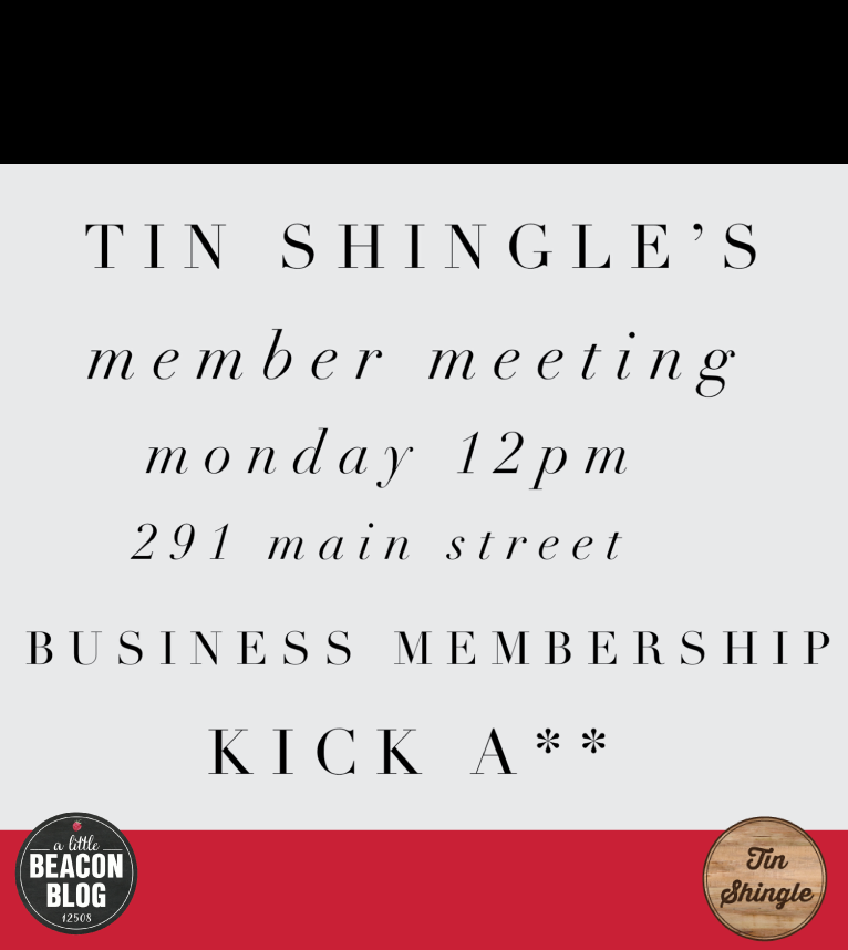 tin-shingle-member-meeting-kick.png