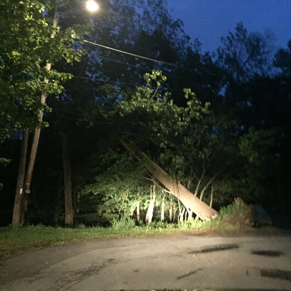This Tree uprooted at the end of rombout avenue, at the Fanny Fay Girl Scout House.  Photo Credit: Katie Hellmuth Martin