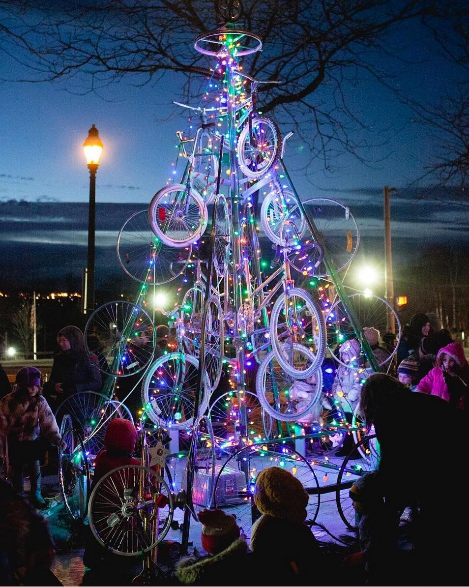 bicycle tree lit night.jpg