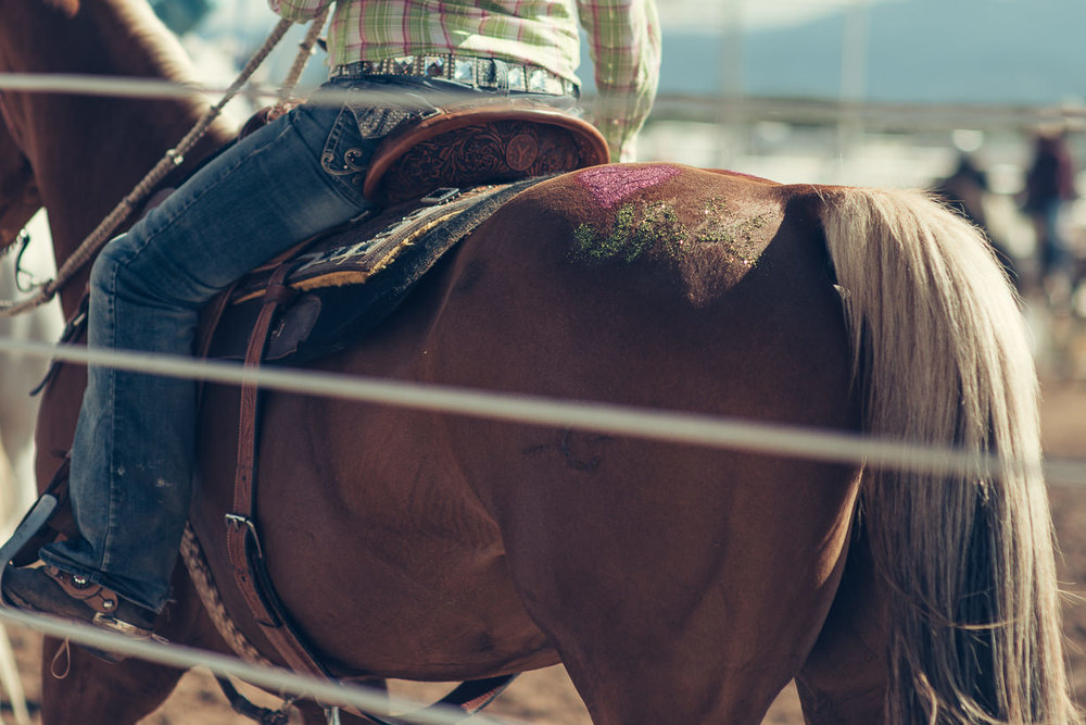 rodeo_©SimonPauly-3.jpg