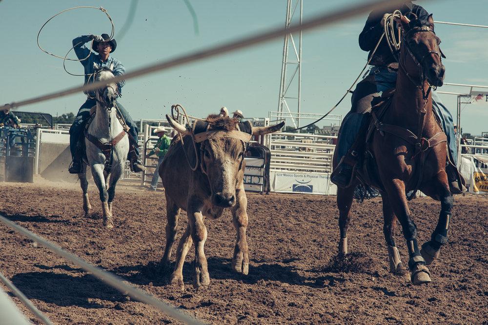 rodeo_©SimonPauly-4.jpg