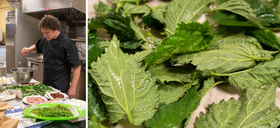 Nelson preparing one of the the hors d'oeuvres: Deep Fried Stinging Nettle.