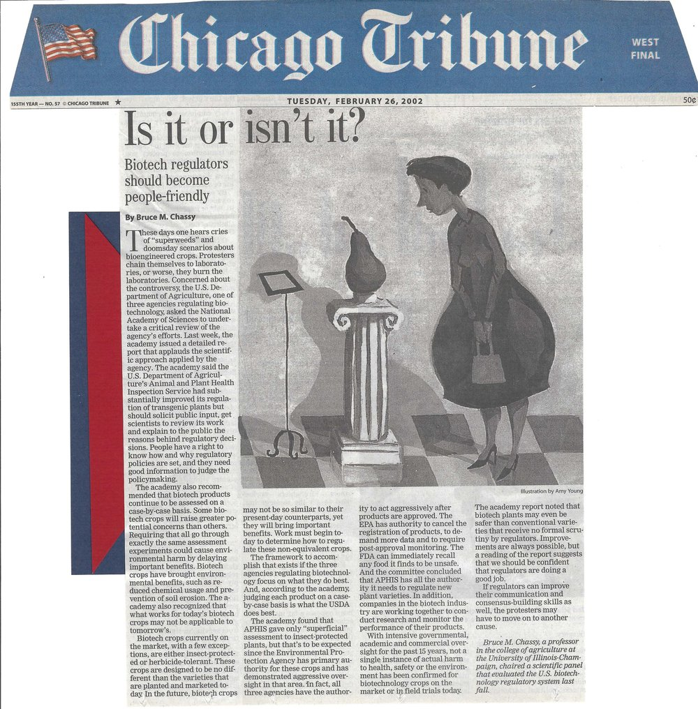 Chicago Tribune 2.26.02.jpg