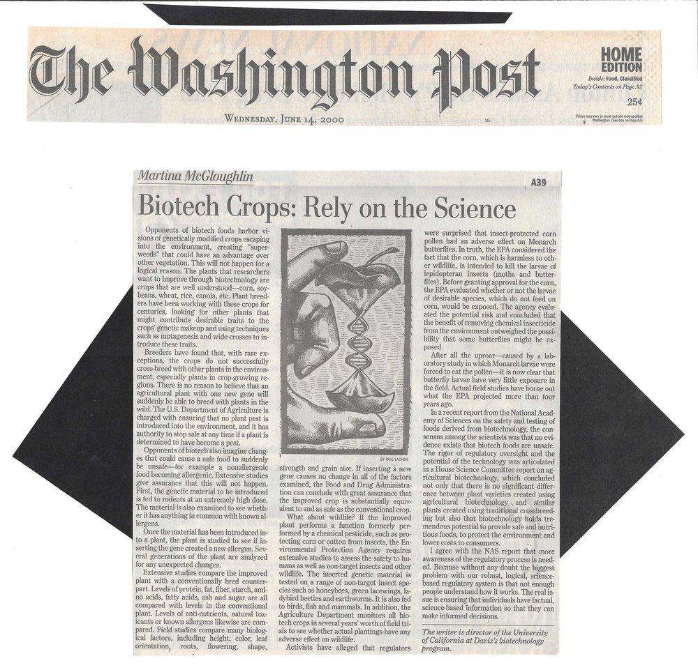 Wahington Post 6.14.00.jpg