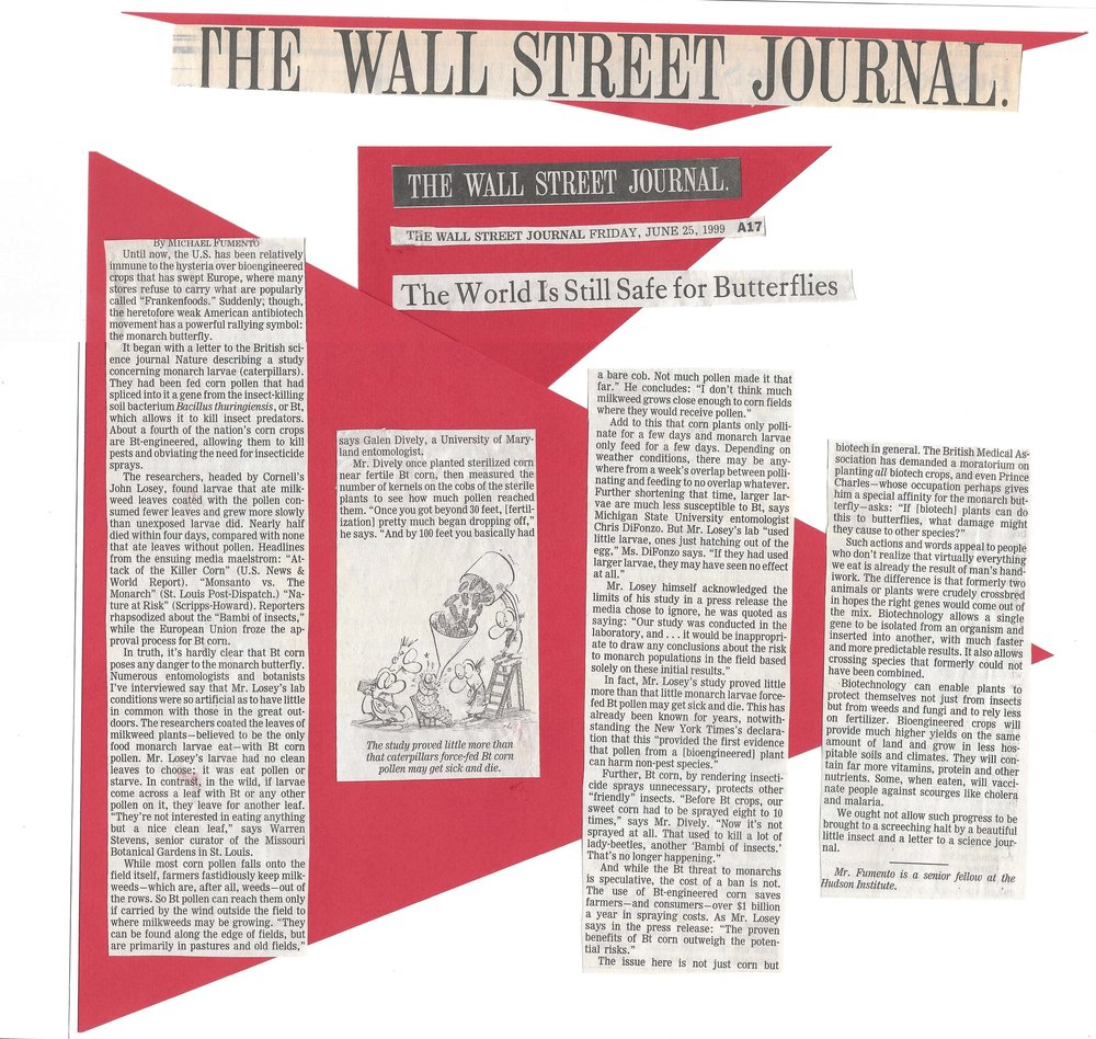 Wall Street Journal 06.25.99.jpg