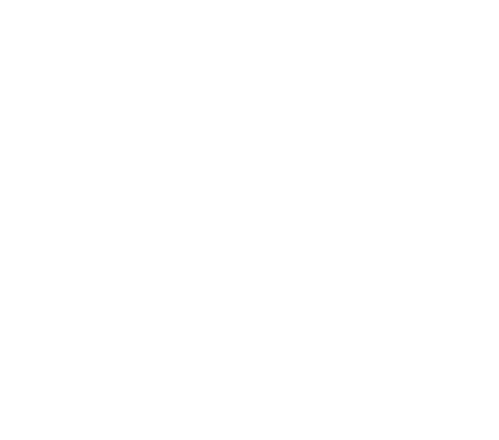 NUTRITIONAL INFO strength-03.png