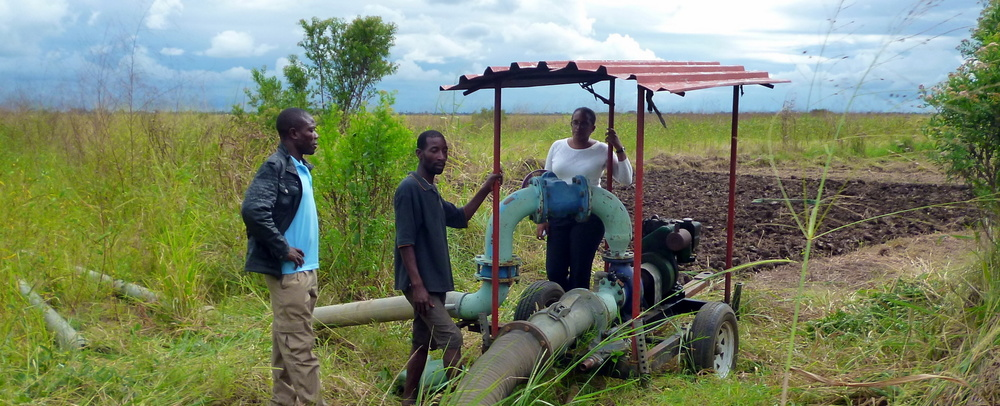 Action research on farmer-led irrigation development in Mozambique (ARF-NWO)