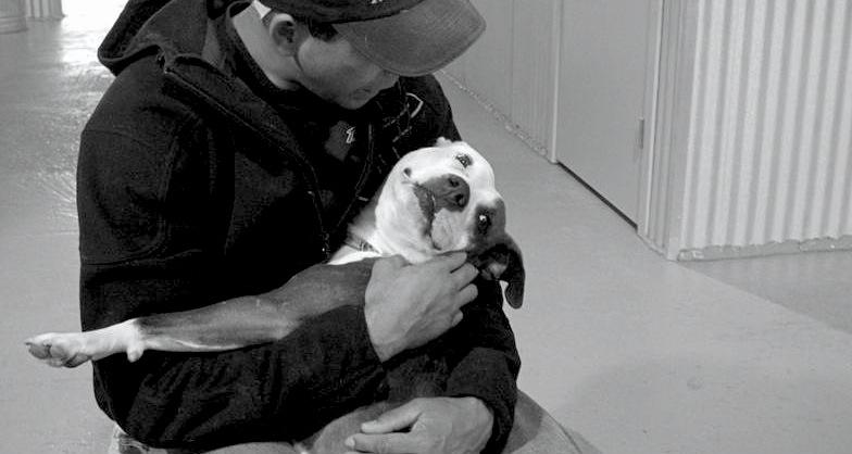 Curtis Scott, Chicago Dog Trainer