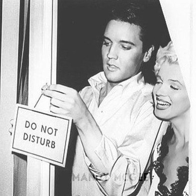 Mood of the day. . . . . #working #love #workinprogress #stars  #marilyn #elvis #inspiration #blackandwhite #photography #vintage #iconic #fashion