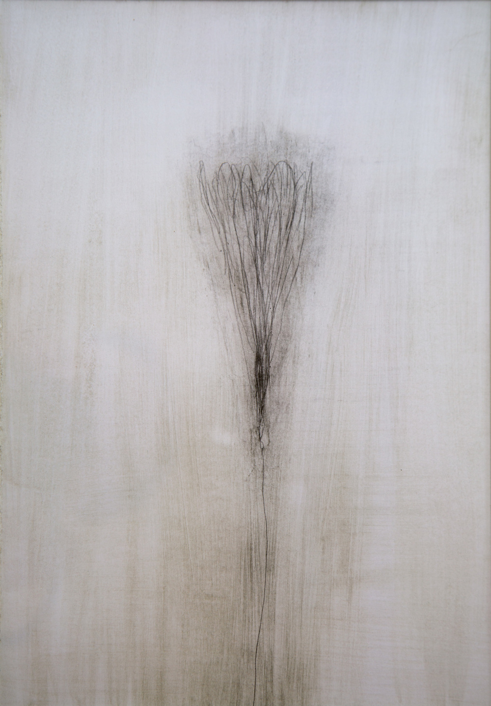 UNTITLED NO. 3, 282 x 195 mm,    pencil and oil wash on prepared paper  , 2015. Private Collection.