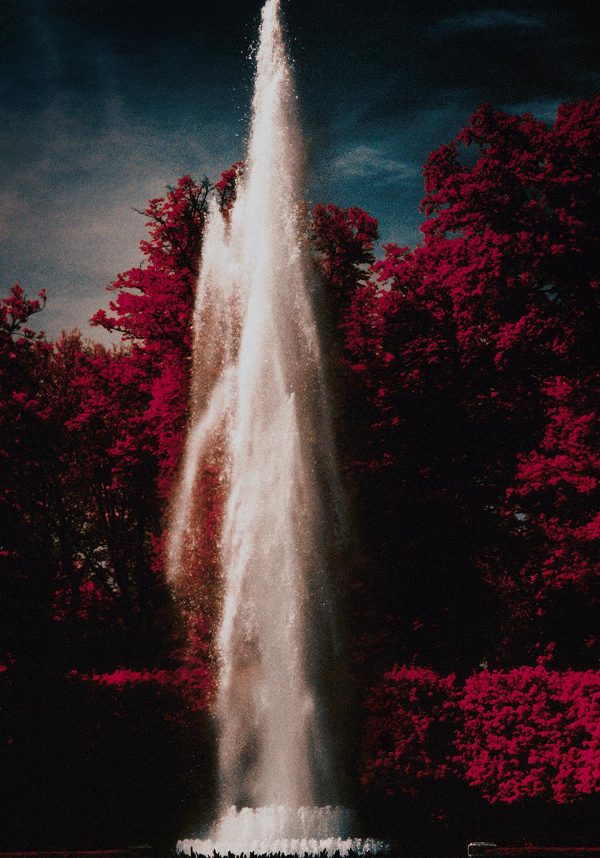 Versailles_Hasselblad_Analogue0002.jpg