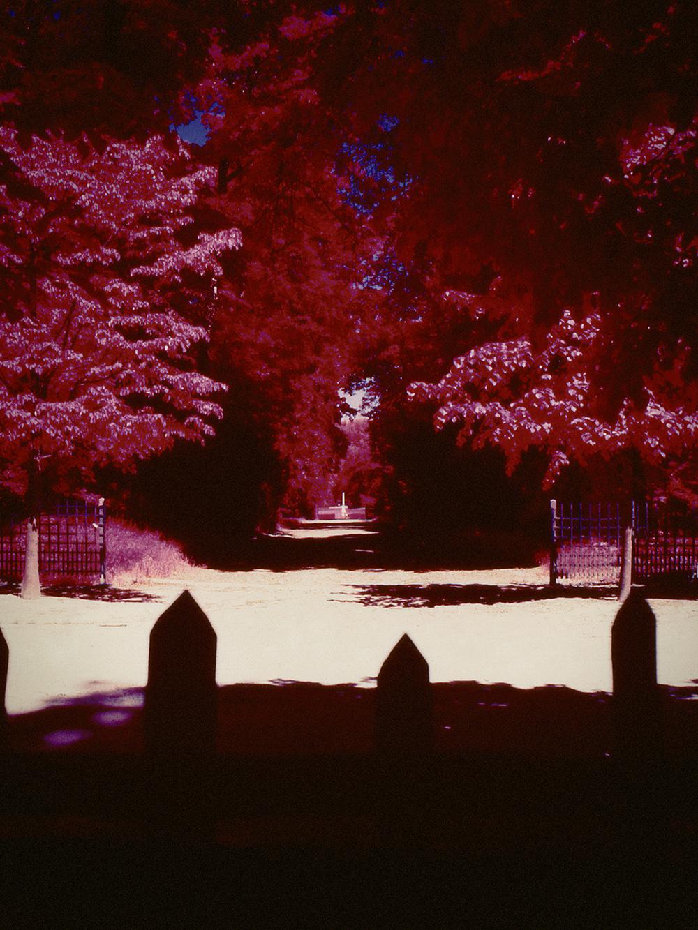 Versailles_Hasselblad_Analogue0004.jpg