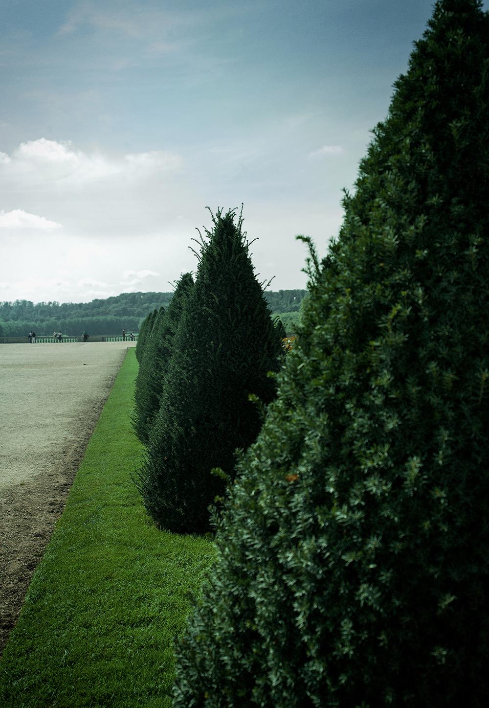 Versailles_Hasselblad0017.jpg