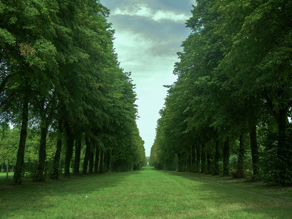 Versailles_Hasselblad0036.jpg