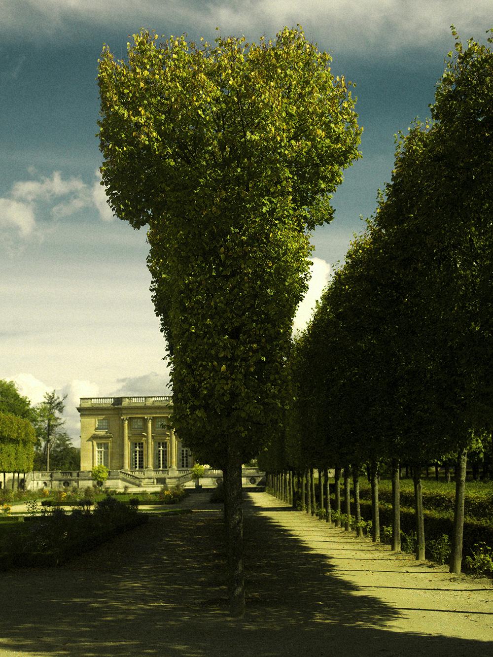 Versailles_Hasselblad0045.jpg