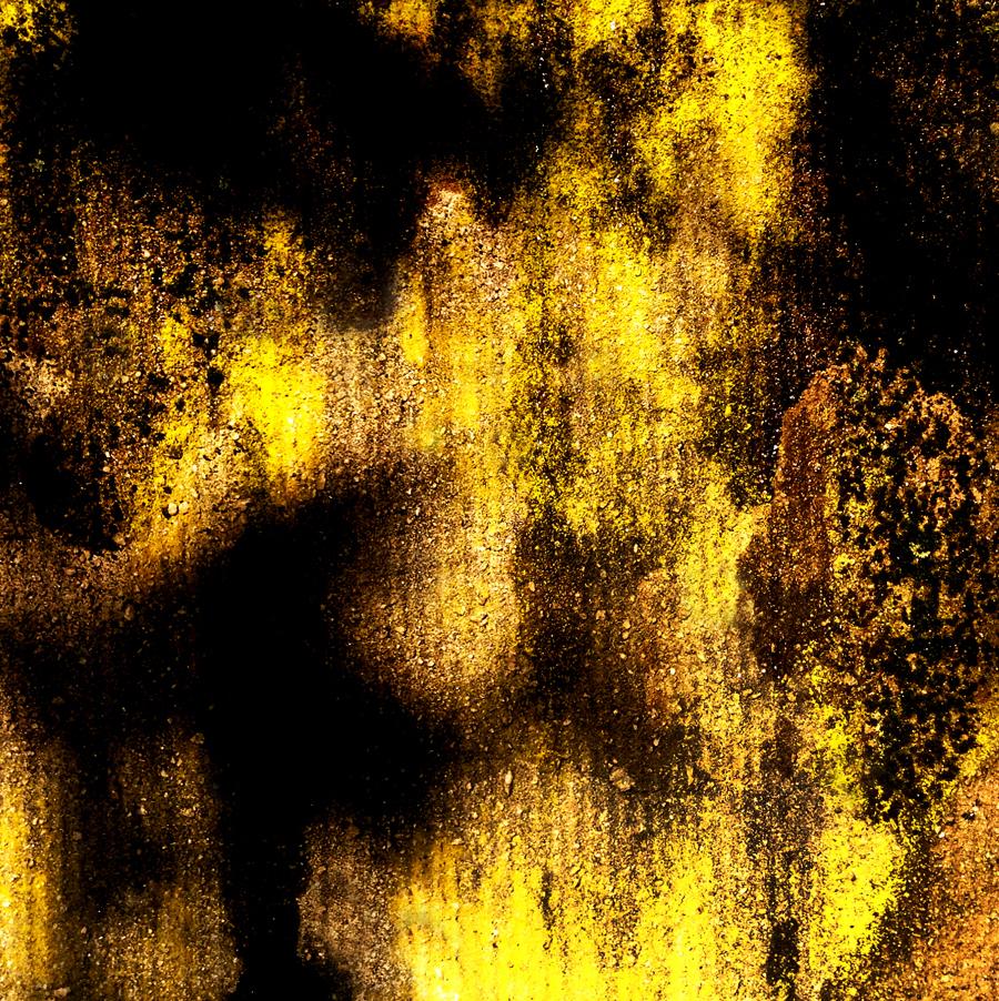 yellowssss.jpg