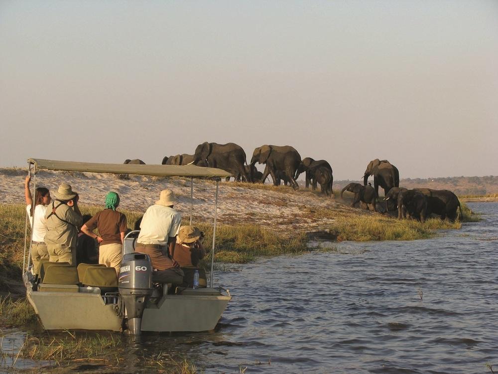 Safari_By_Boat.jpg