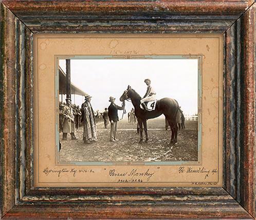 horse frame.png