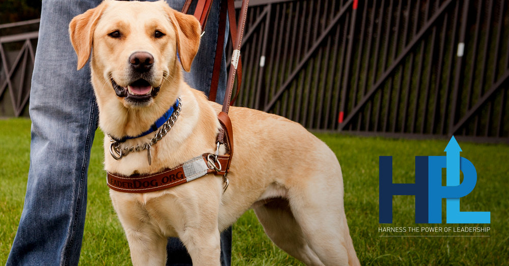 Harness the Power of Leadership (HPL) is a Leader Dogs for the Blind leadership-training program that focuses on service animals, their trainers, and blind or visually impaired people.