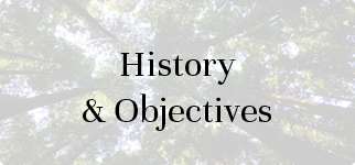 History & Objectives | UK National Advisory Board on Impact Investing