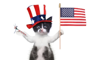 We're open on July 4th! Celebrate America's independence loving on our sweet furry friends at the Cat Cottage!