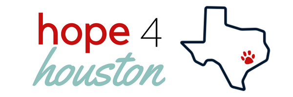 hope4houston.png