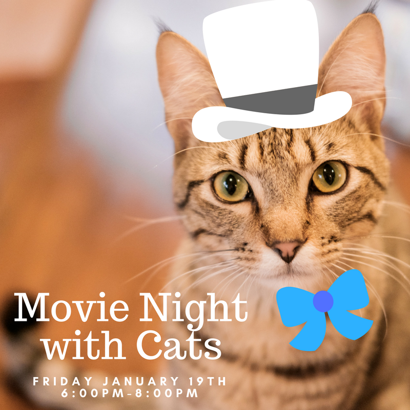 Movie night with cats.png
