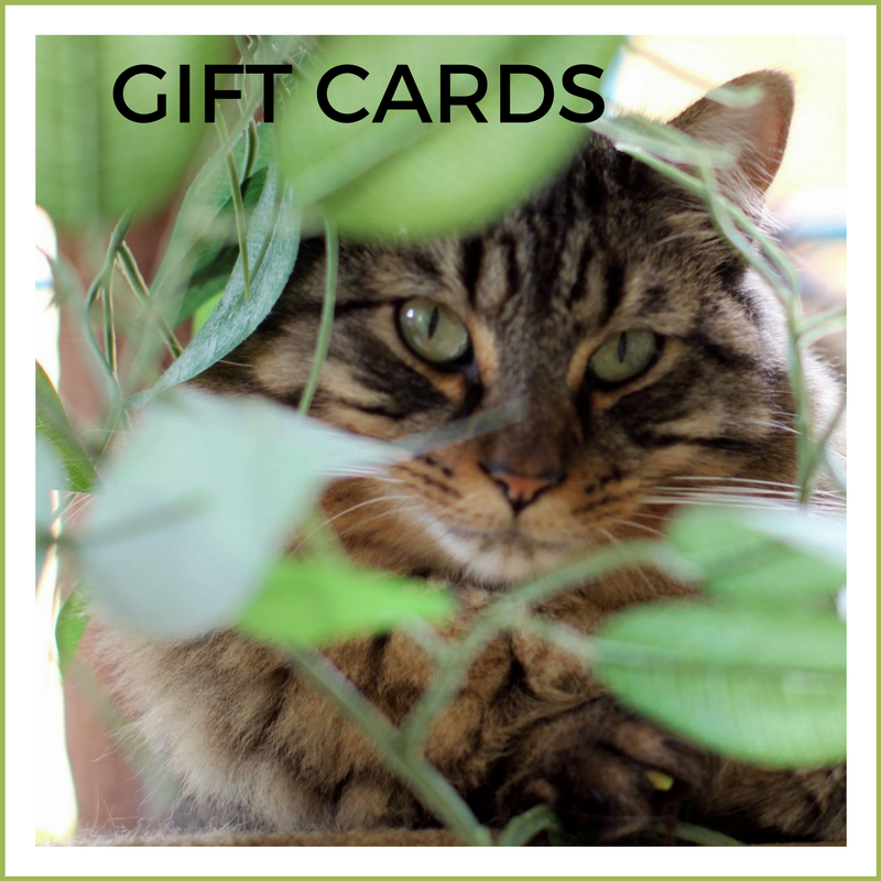 Web - gift cards.png