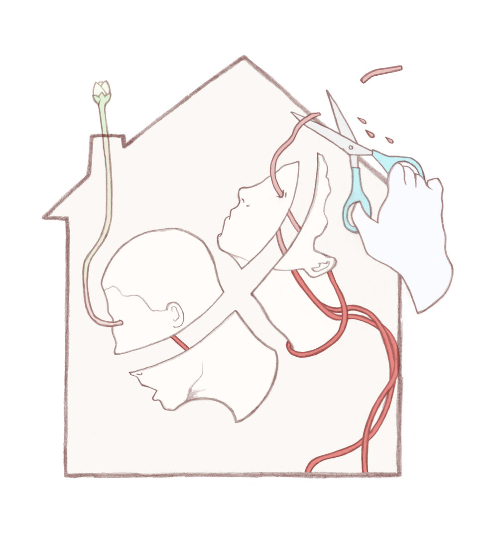 Illustration for The Bristol Cable about domestic abuse and treatment programmes.