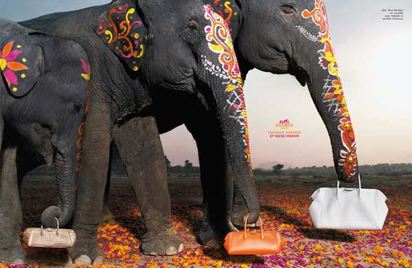 decorated-indian-elephants-hermes-ad-campaign-bags