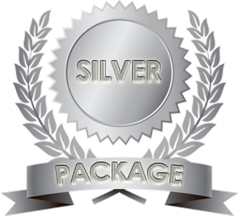 silver-package copy.png