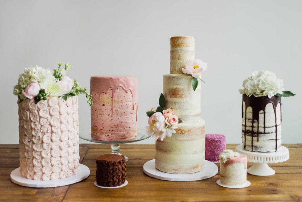 cake-©Shawna_Stanley_2017-2_edit.jpg
