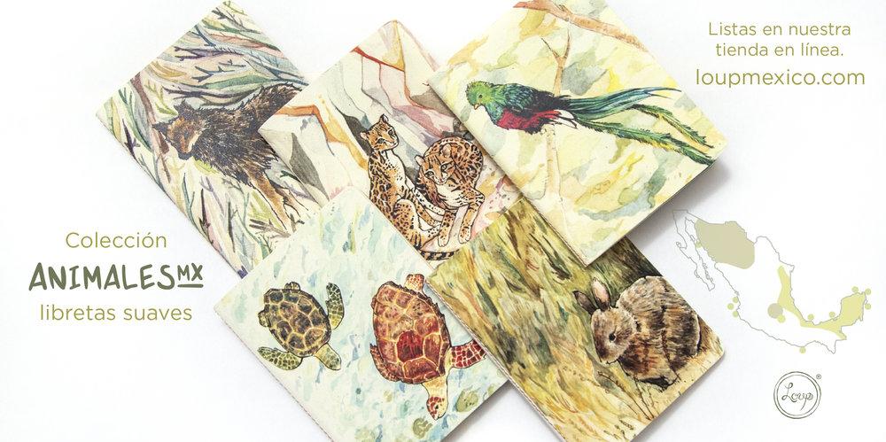 paquete IG animales mexicanos libretas 01-3.jpg
