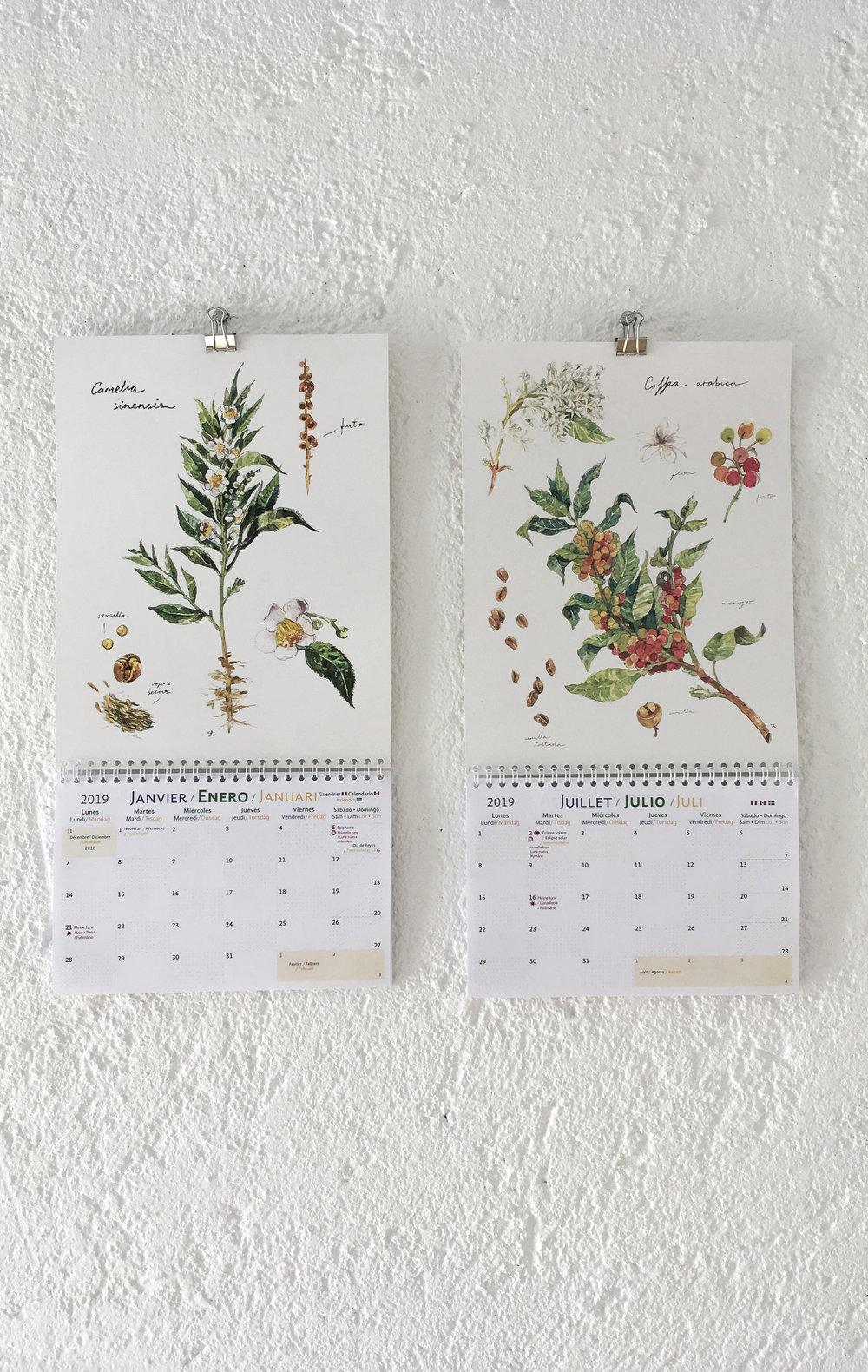 calendario 2019 06.jpg