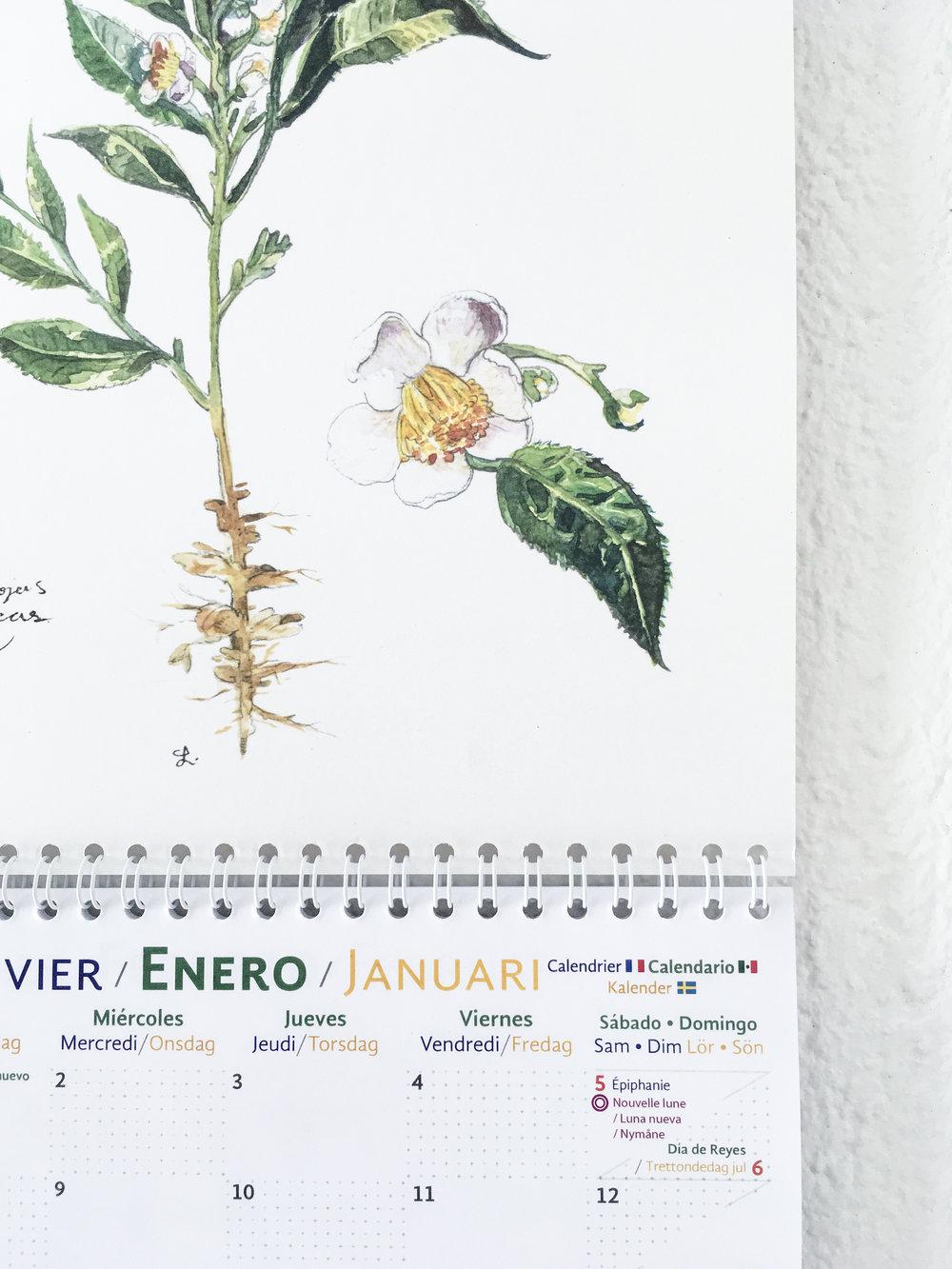 calendario 2019 09.JPG