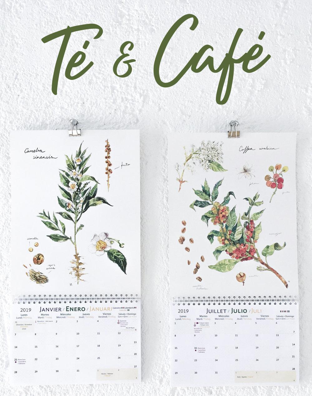 Tea & Coffee illustration • Illustration de Thé & Café