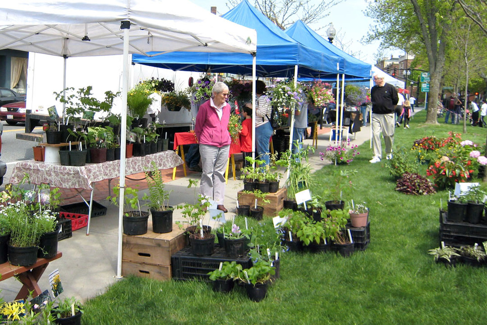 Outdoor market 17.jpg
