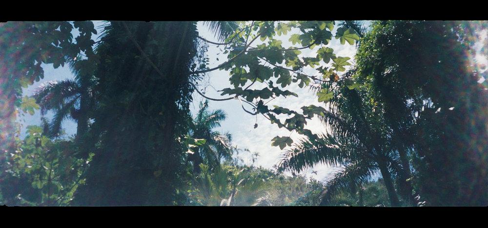 Cuba (1 of 1)-2.jpg
