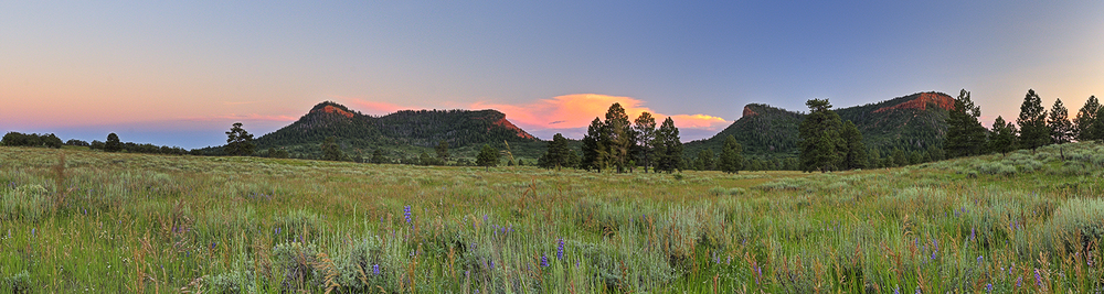 It's all about the Bears Ears National Monument in southern Utah. Source: Tim Peterson, Grand Canyon Trust.