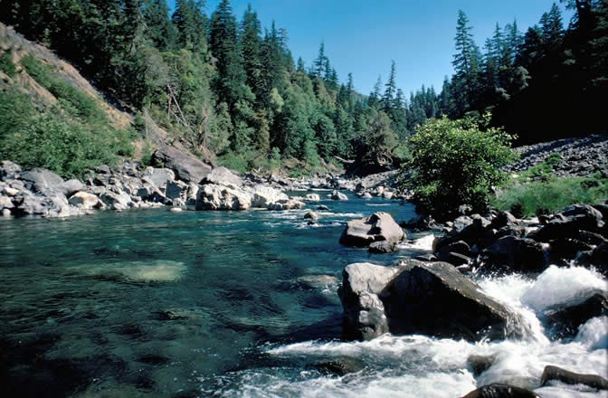 "The Chetco Wild and Scenic River near the mouth of Boulder Creek. Above the mouth the Chetco WSR is classified as ""wild"" (no mining) and below the mouth it is classified as ""scenic"" (and eventually ""recreational"" (mining allowed in both).  Source: Lee Webb, US Forest Service."