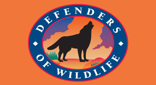 Defenders of Wildlife got upset with Rep. Richard Pombo's attacks on the Endangered Species Act, and most all other things holy, and successfully prevented his re-election. (Don't you think the above would work well as a battle flag?  Source: Defenders of Wildlife